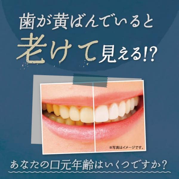 ホワイトニング歯磨き粉 はははのは | ホワイトニング 歯磨きジェル ホームホワイトニング 歯 歯を白くする 歯みがき粉 オーガニック 黄ばみ 送料無料 30g|hareruya-official|05