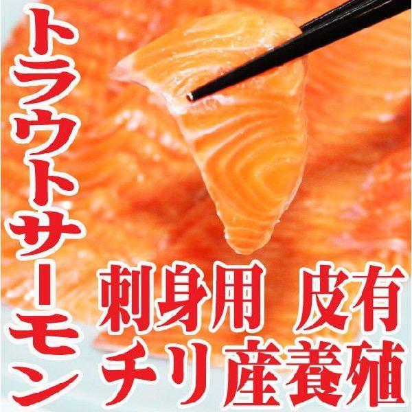 サーモン 半身 刺身用 皮付き 800g前後 チリ産 冷凍 フィレ 活締め 養殖 鮭