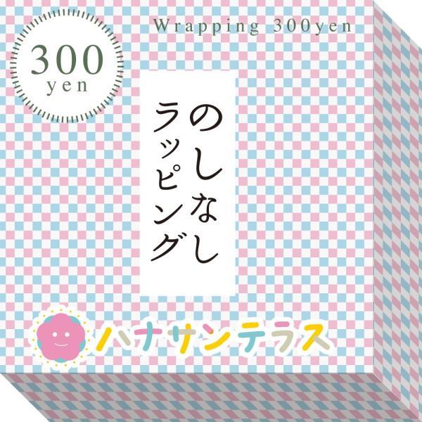 さんさんまくら マルチロング授乳クッション 抱き枕 日本製 洗える 妊婦 しっかり1mmビーズ ラッピング可|hashbaby|17