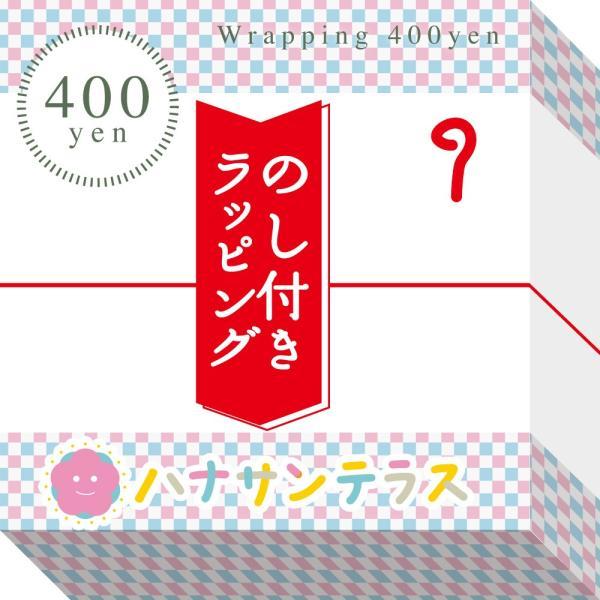 さんさんまくら マルチロング授乳クッション 抱き枕 日本製 洗える 妊婦 しっかり1mmビーズ ラッピング可|hashbaby|18