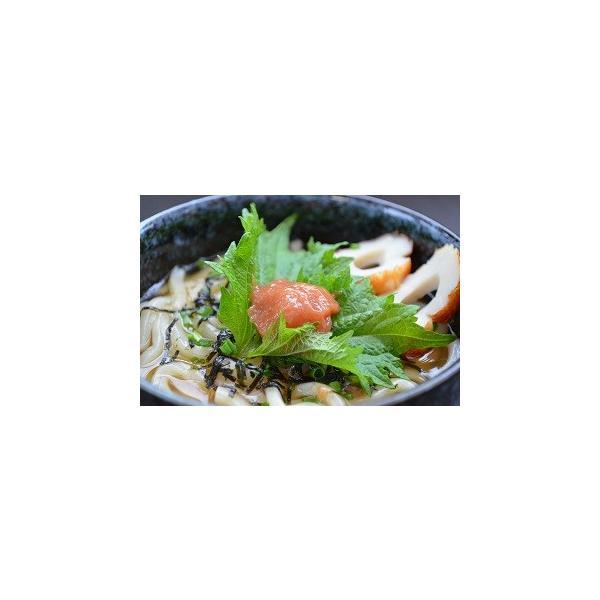 送料無料 3種類の味が選べる高級梅肉 紀州南高梅の梅干100%使用のピュア梅肉 【梅干し、南高梅、バニリン含有】|hatenasi|05