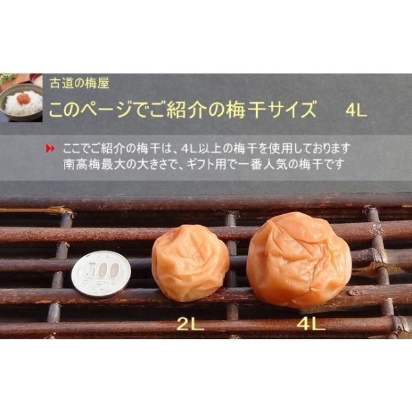 お中元 高級梅干 今期だけの限定商品 送料無料 最高級梅干 超大粒 800g 塩分約7%|hatenasi|06