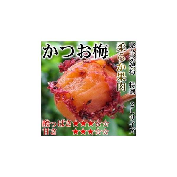 かつお 梅干し 特選2Lサイズ はてなしシリーズ かつお梅(塩分7%) 500g|hatenasi|03