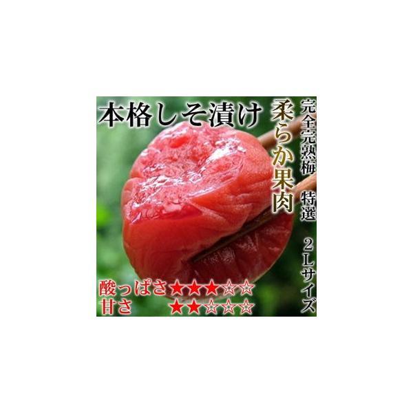 梅干し お試しセット 11種類から3種類が選べる 只今無添加梅干150gプレゼント中 内容量540g〜最大600g|hatenasi|07