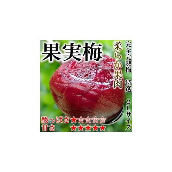 梅干し お試しセット 11種類から3種類が選べる 只今無添加梅干150gプレゼント中 内容量540g〜最大600g|hatenasi|10