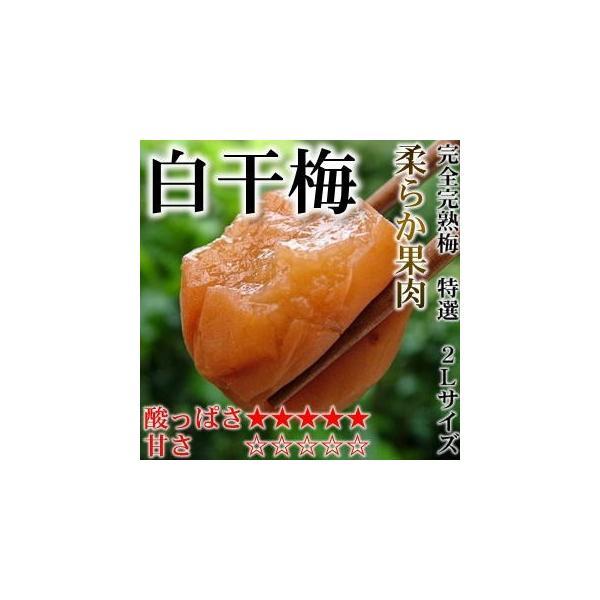 梅干し 酸っぱい梅干し 特選2Lサイズ はてなしシリーズ 白干梅(しらぼしうめ) (塩分12%) 500g|hatenasi|02