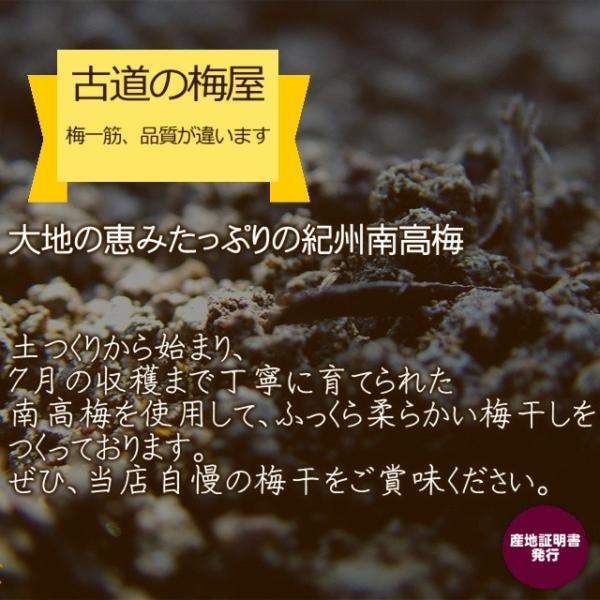 梅干し 訳あり 石神さんちの訳あり梅干し 1kg(1000g)  塩分7%【わけあり つぶれ梅】|hatenasi|08