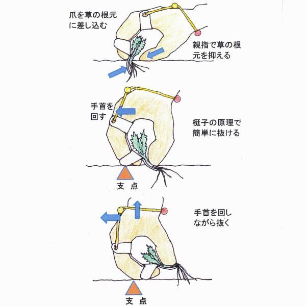 草むしり爪 パワーネイル (指がスコップ代わりに)テレビ東京の「トレたま」「ピカちんハンター」で紹介 ※送料¥200(5個まで)|hatsumei-net|05