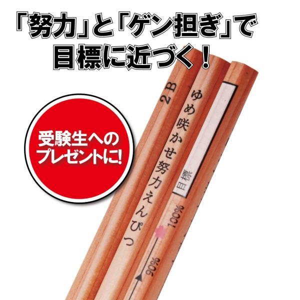 ゆめ咲かせ努力えんぴつ(3本入り) ※送料¥200(10個まで)|hatsumei-net