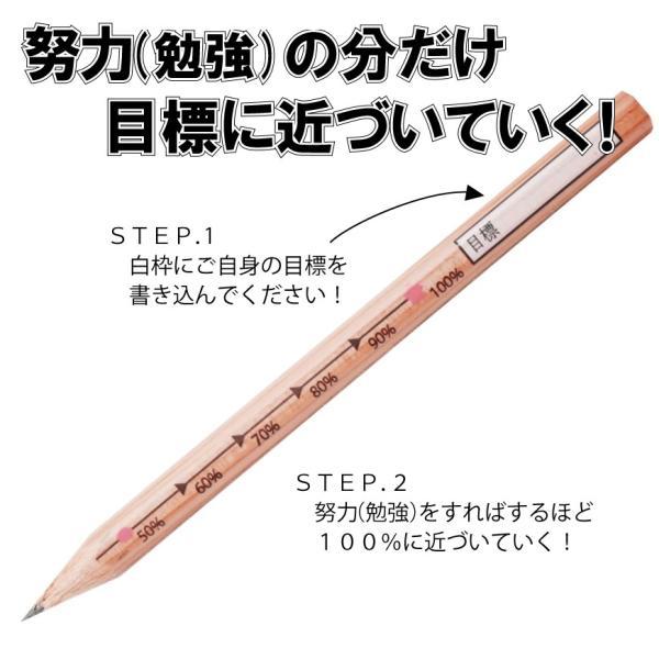 ゆめ咲かせ努力えんぴつ(3本入り) ※送料¥200(10個まで)|hatsumei-net|02