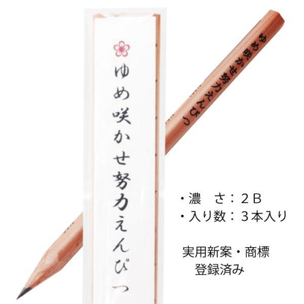 ゆめ咲かせ努力えんぴつ(3本入り) ※送料¥200(10個まで)|hatsumei-net|03