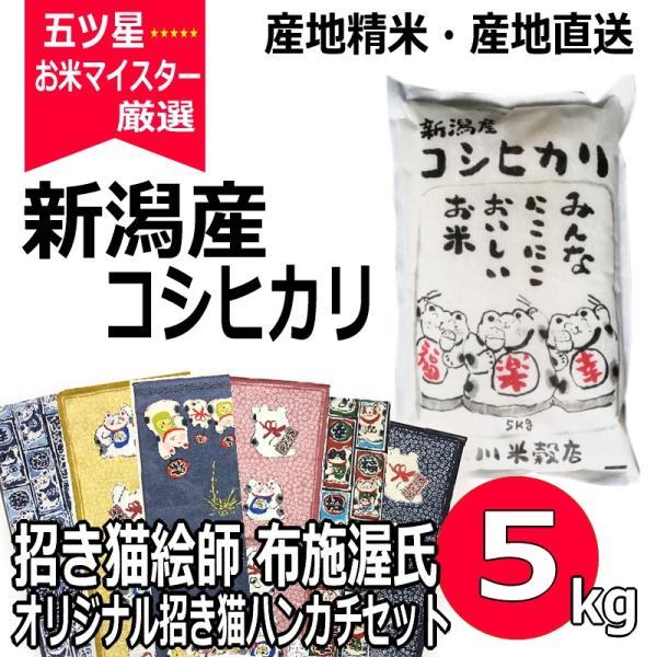 招き猫 ハンカチ セット コシヒカリ 5kg 新潟県産コシヒカリ 令和2年産 米 白米 送料無料