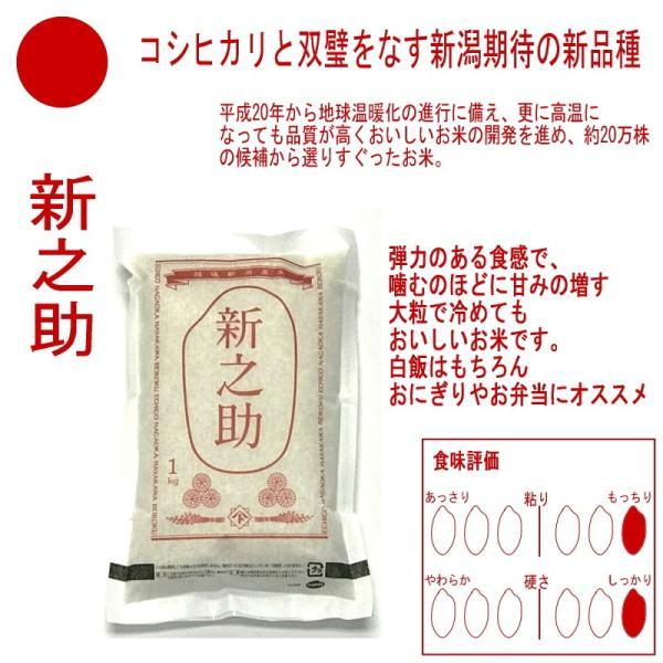 お米 コシヒカリ 新之助 こしいぶき つきあかり 華麗舞 各1kg(5kg) 食べ比べセット haya-kome 03
