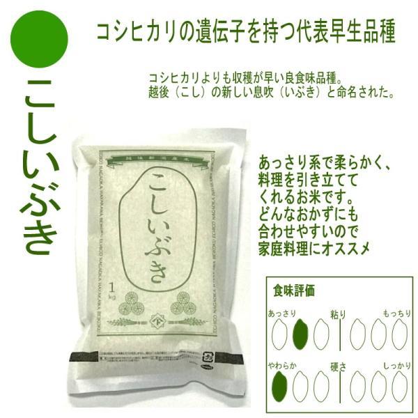お米 コシヒカリ 新之助 こしいぶき つきあかり 華麗舞 各1kg(5kg) 食べ比べセット haya-kome 04