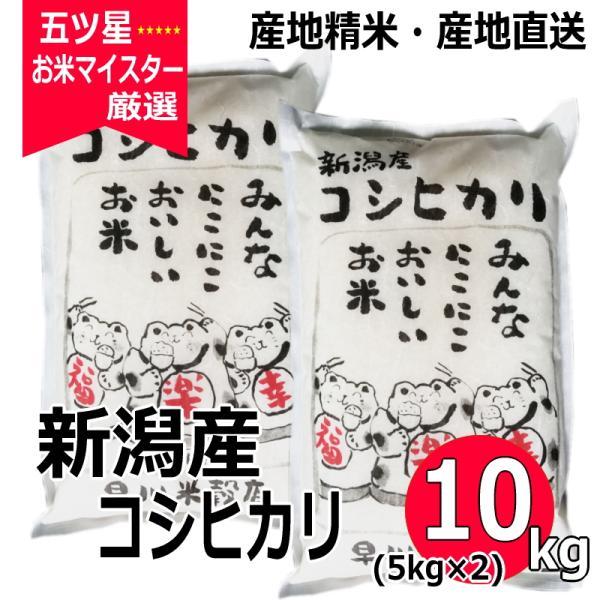 コシヒカリ 10kg ( 5kg ×2袋 ) 新潟県産コシヒカリ 平成30年産|haya-kome