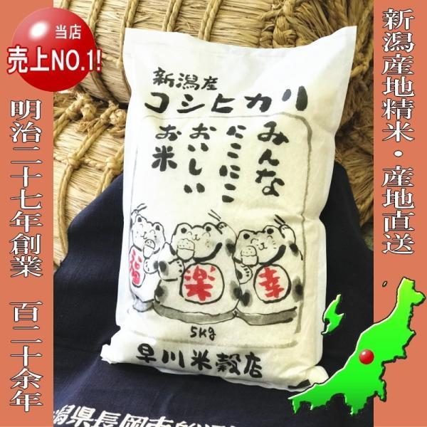 コシヒカリ 10kg ( 5kg ×2袋 ) 新潟県産コシヒカリ 平成30年産|haya-kome|02