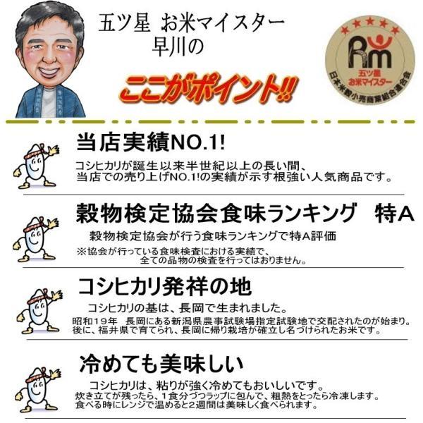 コシヒカリ 10kg ( 5kg ×2袋 ) 新潟県産コシヒカリ 平成30年産|haya-kome|03