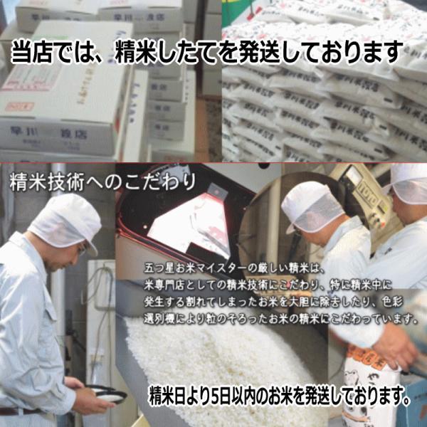 コシヒカリ 10kg ( 5kg ×2袋 ) 新潟県産コシヒカリ 平成30年産|haya-kome|04