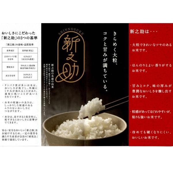 新之助 しんのすけ 平成30年産  新潟産 5kg 送料無料|haya-kome|02