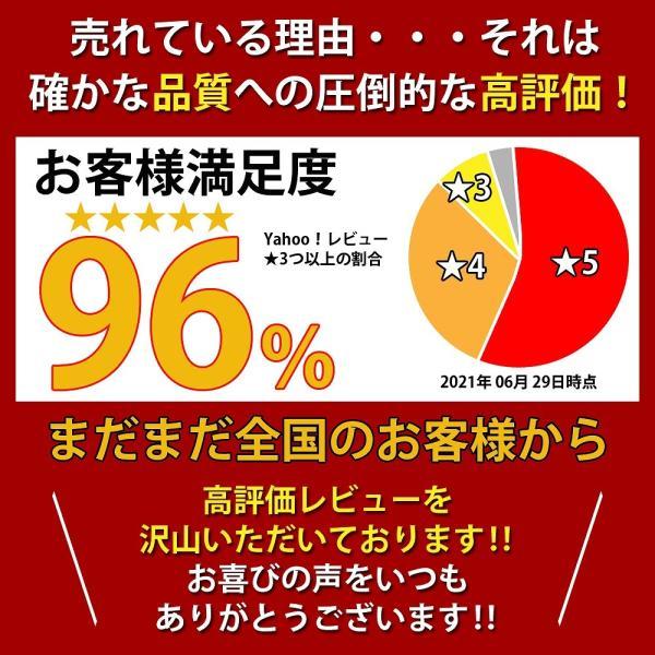 【11月中旬発送】電子ピアノ 88鍵盤 スリムボディ 充電可能 ワイヤレス コードレス MIDI対応 奥行きわずか18.5cm 省スペース 軽い 薄い 88鍵|hayarishop|03