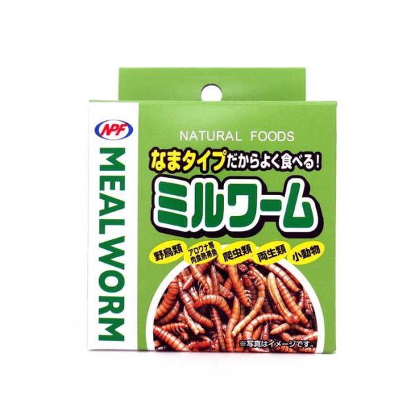 NPF ナチュラルペットフーズ ミルワーム 35g 缶 缶詰 鳥 ハリネズミ モモンガ 小動物 爬虫類 両生類 フード エサ 餌 主食 おやつ