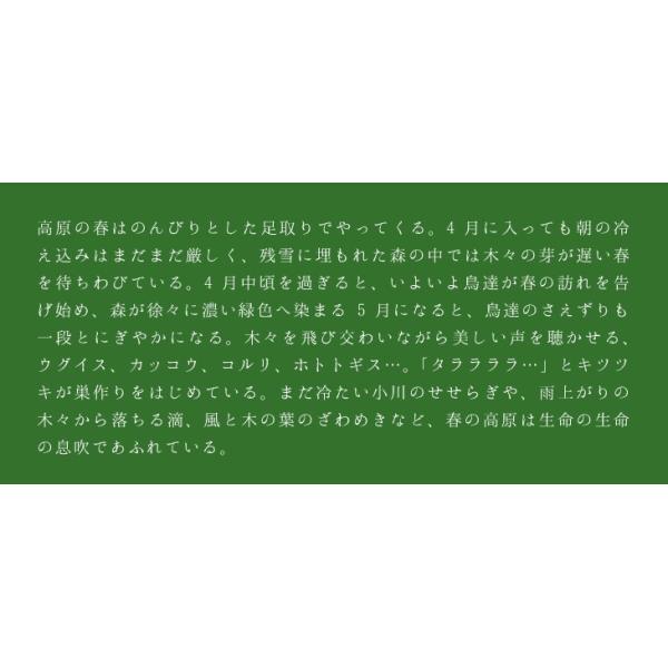 癒し ヒーリング CD BGM 高原の朝 音楽 ミュージック 不眠 healingplaza 03