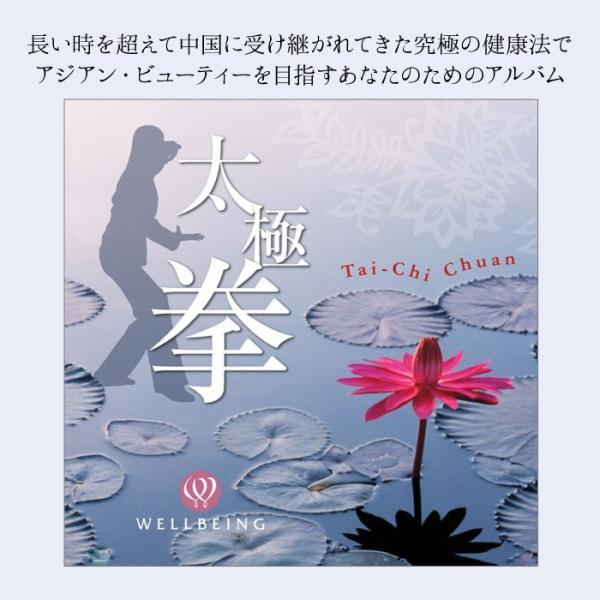 太極拳ヒーリング CD 音楽 癒し ヒーリングミュージック 不眠 ヒーリング|healingplaza|02
