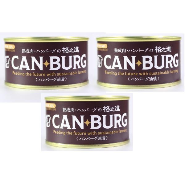 3個セット 門崎 缶詰ハンバーグ 155g