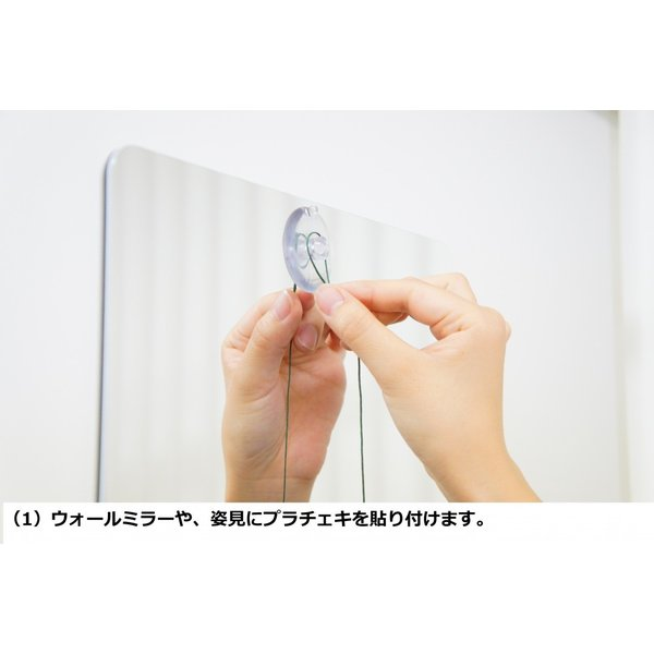 プラチェキ 身体用(プレートタイプ)ローズクォーツ・トリ(ピンク)|healthselect|02