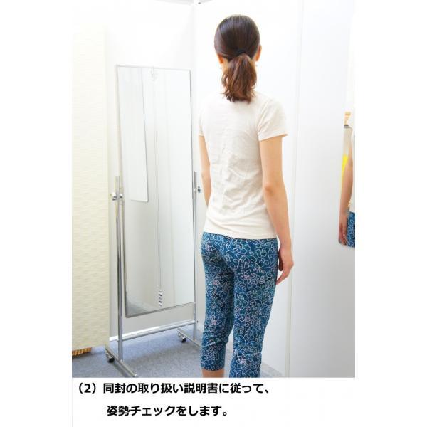 プラチェキ 身体用(プレートタイプ)ローズクォーツ・トリ(ピンク)|healthselect|03