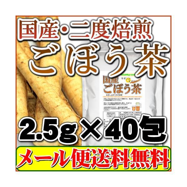 2度焙煎仕立 国産ごぼう茶 100g(国内生産 国内加工)「メール便 送料無料」