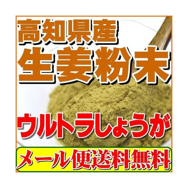生姜 粉末 しょうが パウダー 100g 高知県産ウルトラ生姜 殺菌蒸し工程 1cc計量スプーン入り メール便 送料無料