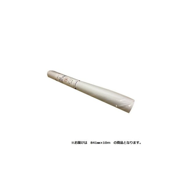 オストリッチダイヤ 1ミリ方眼紙ロールセクション 841mm×10m 1本 81