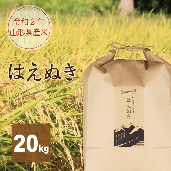 はえぬき 20kg(10kg×2袋) 山形県産 30年産 精白米|heartlandfarm