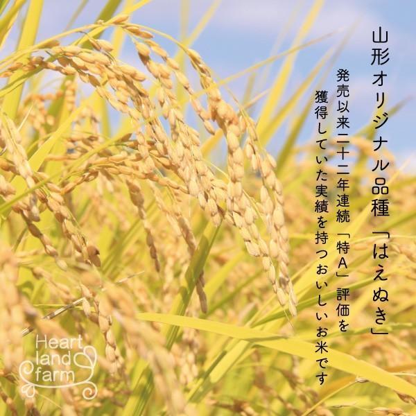 はえぬき 20kg(10kg×2袋) 山形県産 30年産 精白米|heartlandfarm|02