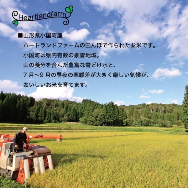 はえぬき 20kg(10kg×2袋) 山形県産 30年産 精白米|heartlandfarm|03