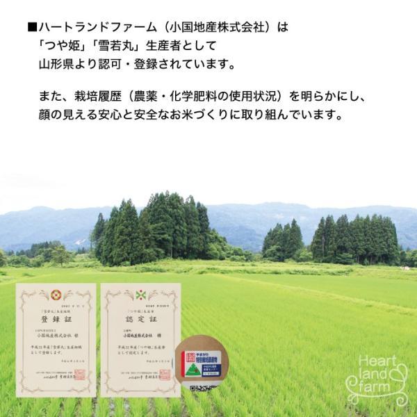 はえぬき 20kg(10kg×2袋) 山形県産 30年産 精白米|heartlandfarm|04
