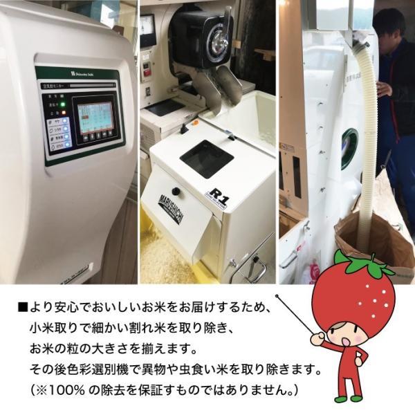 つや姫 5kg 山形県産 30年産 精白米|heartlandfarm|05