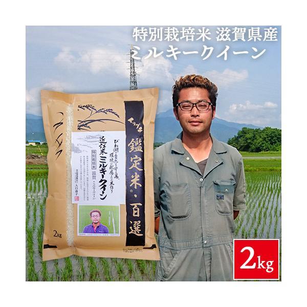 令和2年産  橋本浩一さん作 滋賀県産 ミルキークイーン 2kg