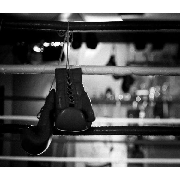 tシャツ カットソー メンズ 半袖 大きいサイズ XXLサイズ 厚手 大橋ボクシングジム 井上尚弥 八重樫東  HEATH. ヒース BLUEPORT ブルーポート 横浜|heath|02