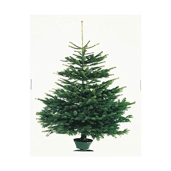 イケア クリスマス ツリー タペストリー もみの木 壁面 大型 パネル 特大|hello-2017|03