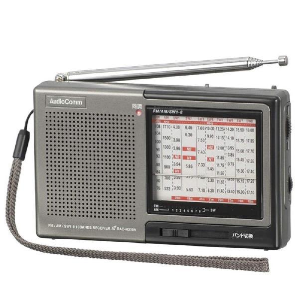 オーム電機 株・競馬ハンディたんぱラジオ RAD-H310N