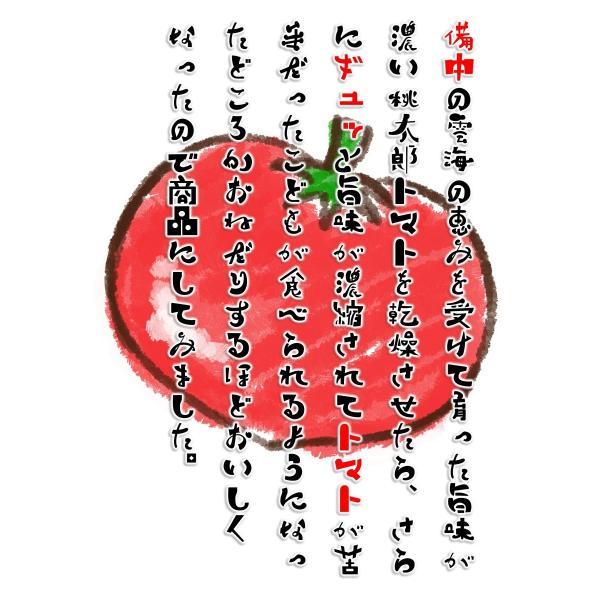 ドライトマト チャックつき 国産桃太郎トマトの旨味がギュッとつまった乾燥トマト10g 生トマト約3個分 hey-com-bicchu 05