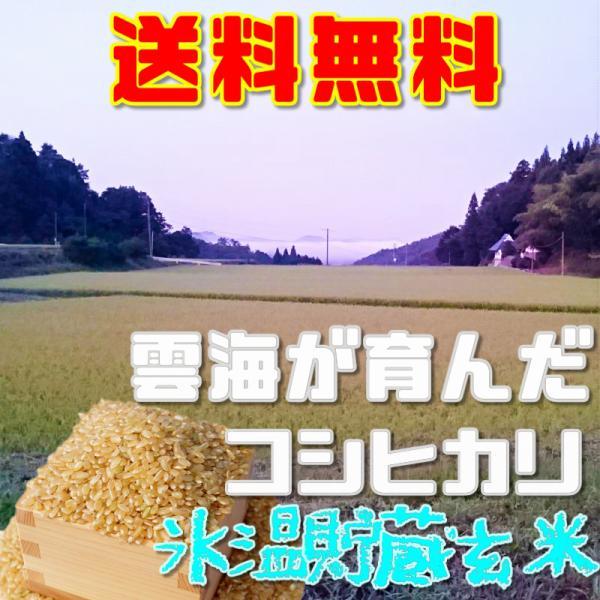 コシヒカリ 氷温熟成 玄米お試し5合約750グラム 送料無料 令和元年産雲海が育んだ備中産|hey-com-bicchu
