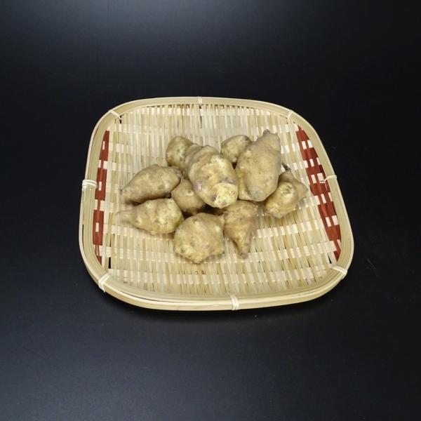 菊芋 おかやま備中産無農薬 菊芋チップス 乾燥スライス 送料無料 チャック付きパック100g 得トクセール hey-com-bicchu 03