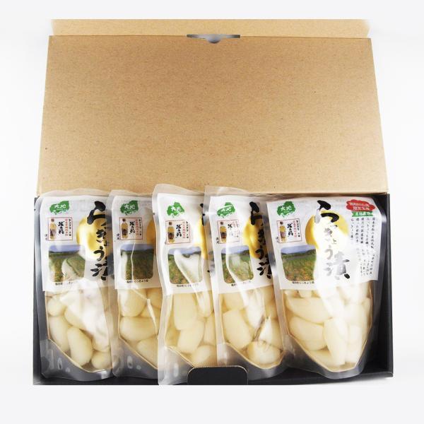 鳥取砂丘産 らっきょう漬 130g 5袋セット ギフト用  送料無料 センナリ 米酢 鳥取県