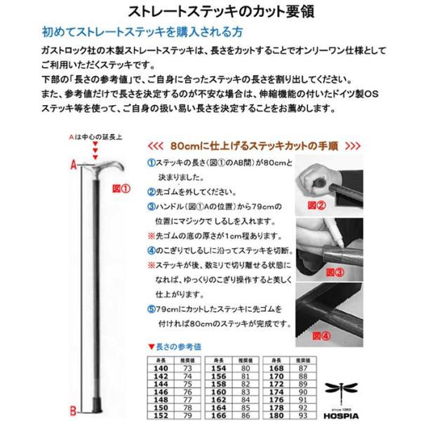 ( ドイツ製ガストロック / つえ ステッキ ) 高級木製杖 シルバーエレガンス 高級ステッキ 一本杖 おしゃれ 高齢者 シニア プレゼント ギフト 敬老の日 hi-select 05