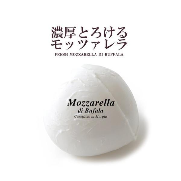 モッツァレラ チーズ ムルジア社 とろける濃厚フレッシュモッツァレラ・ディ・ブッファラ 水牛モッツァレラ 100g  予約商品|hi-syokuzaishitsu