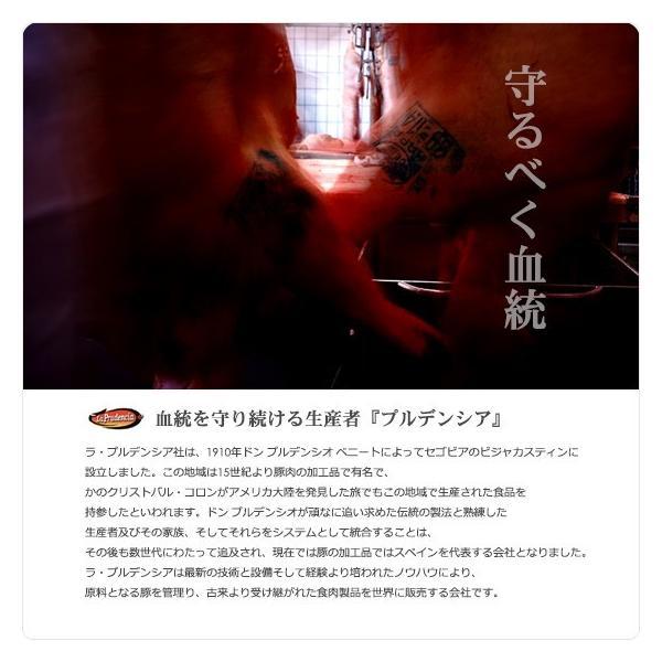 イベリコ豚 赤身のカルビ&霜降りのセクレトディバリガータセット 送料無料 イベリア半島原産種血統75%以上のイベリコ豚。 800g|hi-syokuzaishitsu|02
