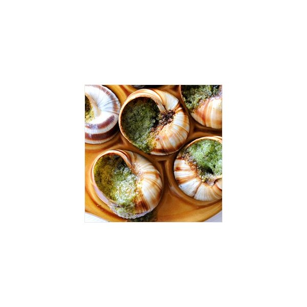 エスカルゴ フランス産 エスカルゴ ア ラ ブルギニヨン 30粒入 (バター入りエスカルゴ) 冷凍のみ